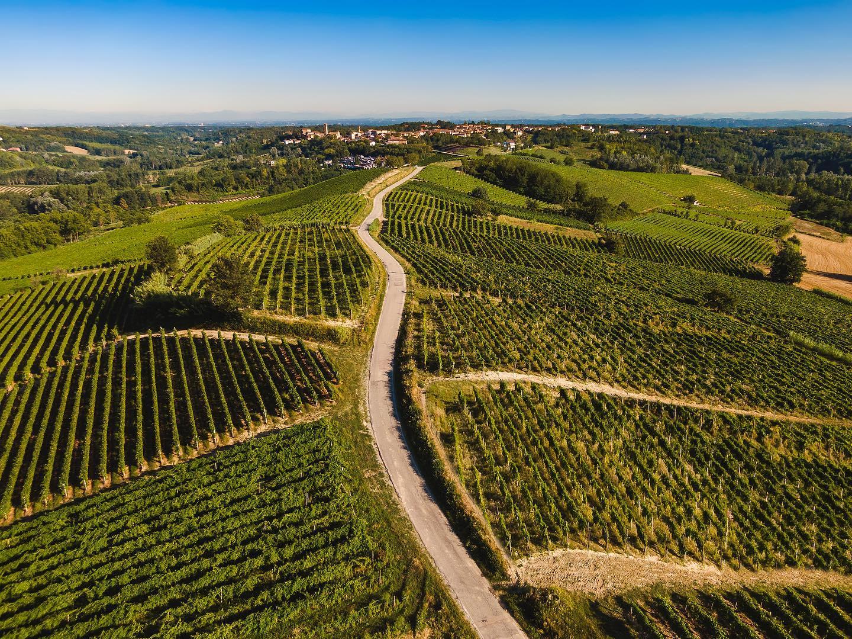 Sostenibilità del settore distillatorio, se ne parla a Roma  il 17 settembre