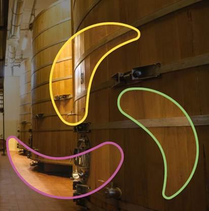 """""""La sostenibilità della filiera distillatoria"""": come accedere all'evento"""